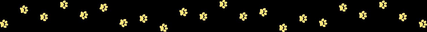 dog feet animation